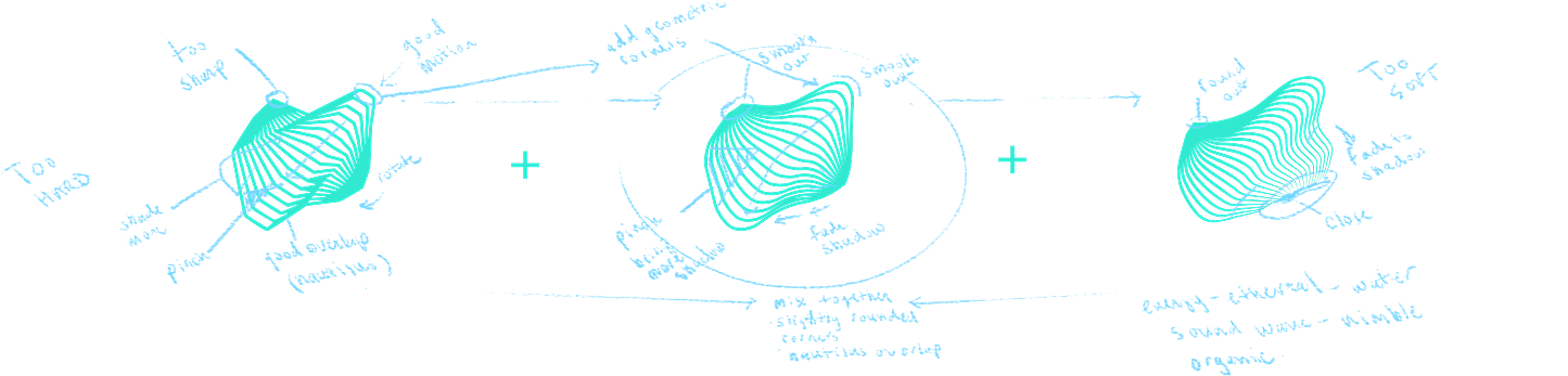 Nautilus Sketches