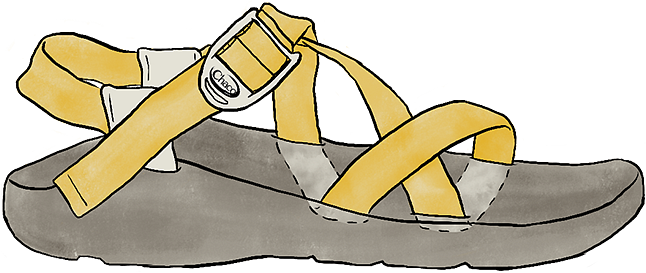 Chaco Sandal with Adjustable Strap Illustration