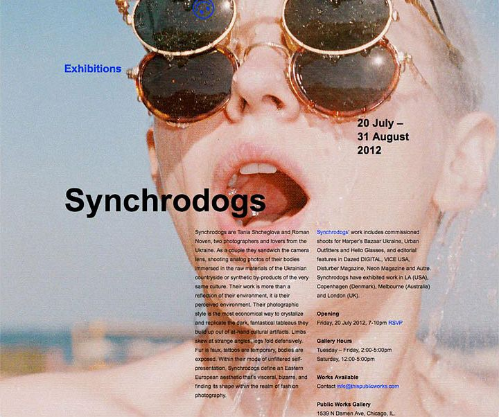 Public Works Synchrodogs Event